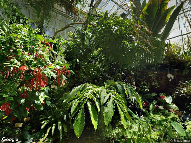 The University of California Botanical Garden